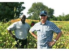 Dr Lamissa Diakite (IER in Mali) and Dr Peter Carberry (CSIRO) discussing cotton systems in West Africa. (Image credit - John Stewart)