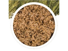Brewers Grain is a quality high protein co-product stockfeed