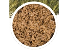 Brewers Sweet Grain is an excellent forage extender