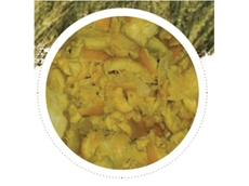 Citrus Pulp high fibre stockfeed
