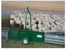 Raised drawbar on portable sheep yards