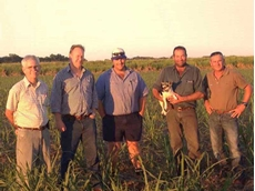 Crop Care staff (left) Glen Tucker and Rob Walker and (right) Darren Jenkins with Mackay Rural's Ian Faulkner (centre) and Aaron Butt (second from right) at the Butt's Homebush farm