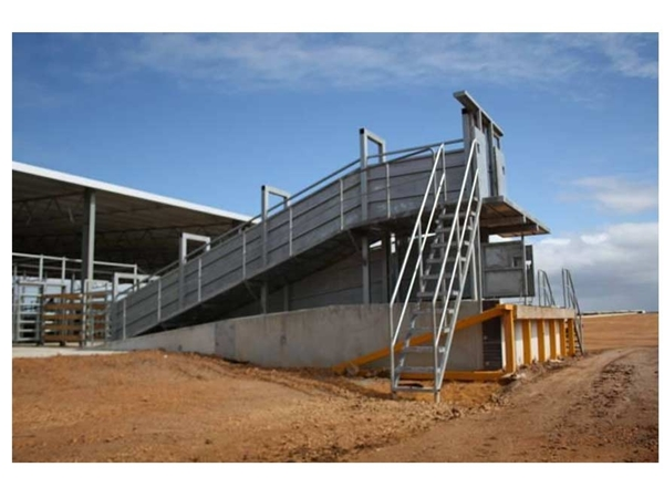 Livestock Loading Ramps From Dsy Engineering