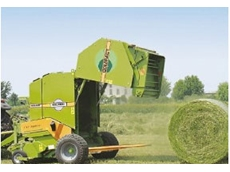 Wolgari Balers from Daken