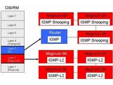 IGMP-L2 software