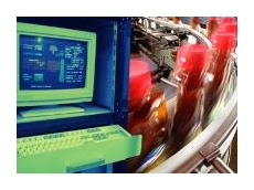 Web server for monitoring industrial facility