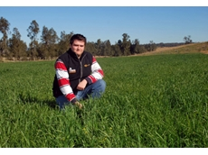 Farmer's Warehouse Agronomist, Kyle Ropa, in a paddock treated with Dow AgroSciences' Grazon Extra