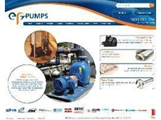 The new EPG Pumps website