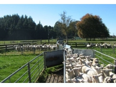 Effectively dip sheep in hours compared to conventional methods which can take days