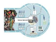 The Memobase electrode system