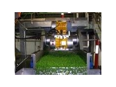 Vegetable processing systems