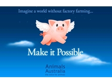 Animals Australia asks Coles to withdraw Make it Possible bags