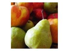 Apple and Pear Australia announces new CEO