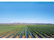 Ord River Irrigation Expansion Project will increase the agricultural area in the East Kimberley to approximately 22,000ha