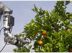 Robots could replace farm workers