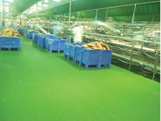 A Flowfresh floor remains resilient in some of the most demanding settings