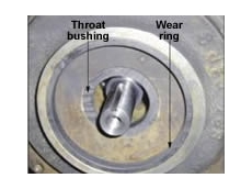 Throat bushing and wear ring made from Vespel CR grade