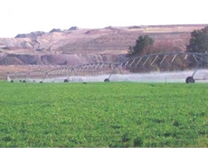 FK uses treated wastewater to irrigate lucerne plantations