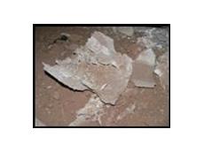 Getex offers asbestos training courses