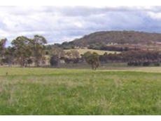 The Grassland Society of NSW boasts a membership of over 500 mostly farmers and graziers