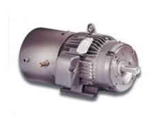 AC flux vector & inverter motors