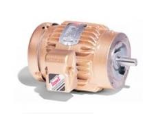 Baldor AC motors