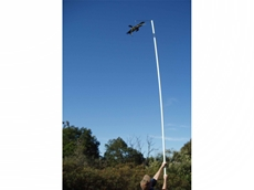 Hawk Bird Scarer on pole