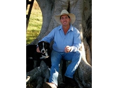 Working and sheep dog training from Heal with Ease