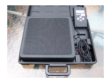 PT250 portable weighing scale
