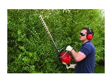 The HHH25D Hedgecutter