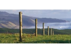 Gallagher electric fence systems