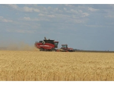 Horton Harvesting offers contract harvesting services
