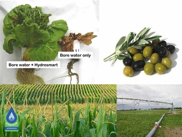 Scale removal from pipework and growth promotion for crops