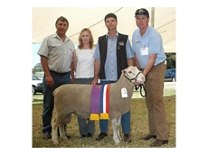 Nalvin Park 050006 has won Champion White Suffolk Ram at Perth Show and features in the Illoura semen catalogue
