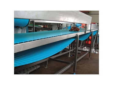 Homogeneous thermoplastic belts for hygienic conveyor solutions