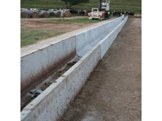 Concrete cattle feeding troughs