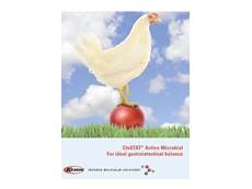 Probiotic Chicken Feed from Kemin