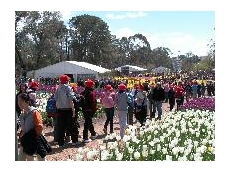 Kennards Events provides pavilions for Floriade 2007