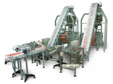 The configuration of the automatic packaging systems used