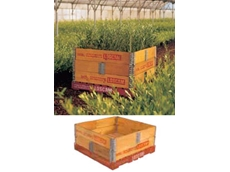 Pallet collars available from Loscam