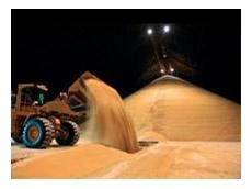 Queensland Sugar Limited Case Study