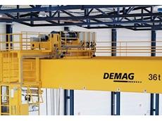 Demag process crane