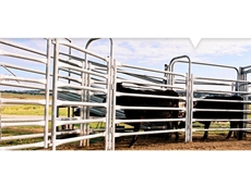 Cattle yards from Metalcorp Steel
