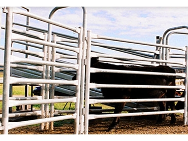 Cattle Yards , Livestock Handling Equipment