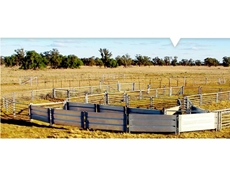 Sheep Yards and Cattle Yards by Metalcorp Steel