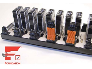 TRUNKGUARD® TPS400 Fieldbus Power Supply by MooreHawke
