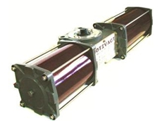 Rotary pneumatic actuator in carbon steel trim