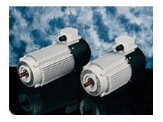ROTOMOT series permanent magnet DC motors are protected to IP54
