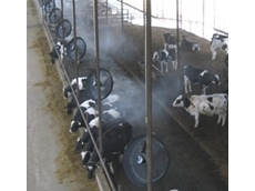 Livestock cooling systems