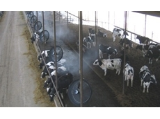 Misting systems for livestock temperature control